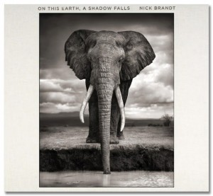 Nick_Brandt-On_this_earth[1]